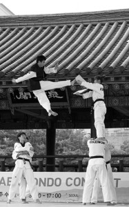 Korea_Namsan_Taekwondo_Demonstration_2